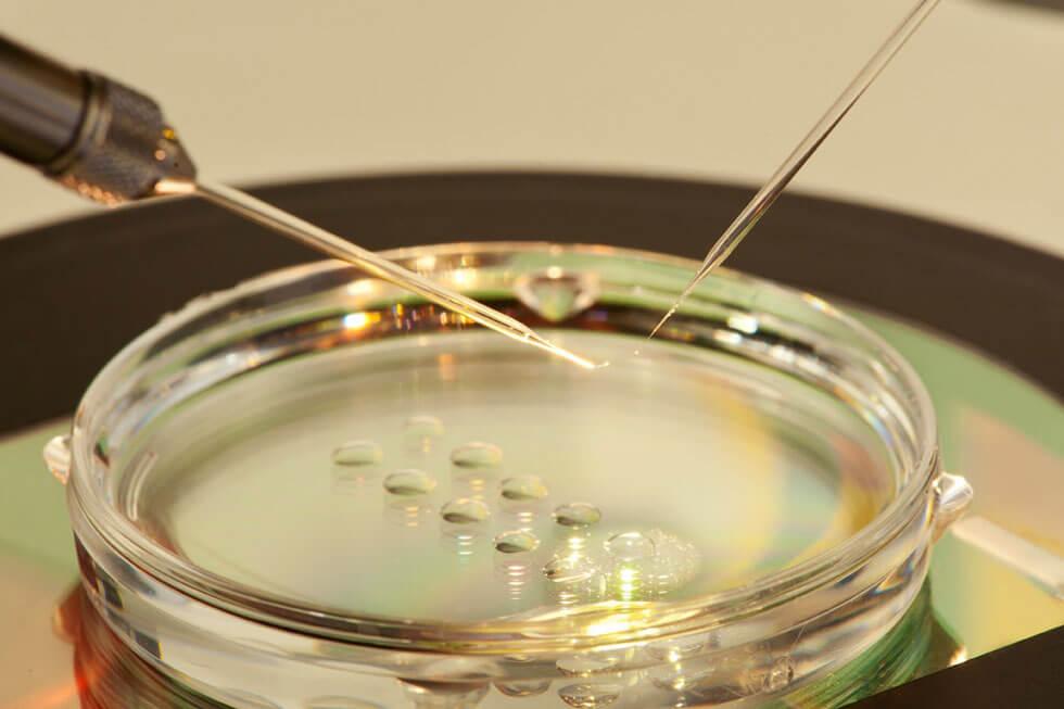 Mikroskopische Feinarbeit Im Labor